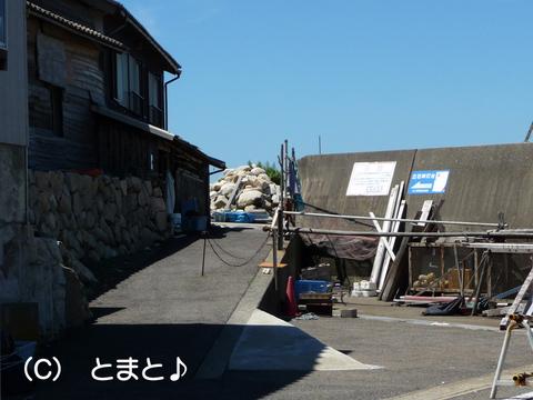 立石岬灯台への道 入口