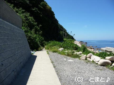 立石岬灯台への道 その1