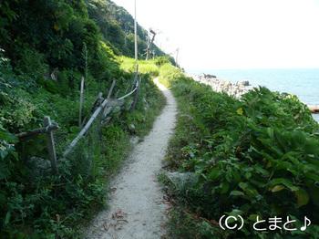 立石岬灯台への道 その3