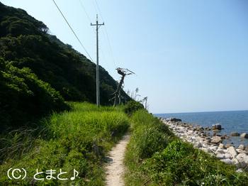 立石岬灯台への道 その4